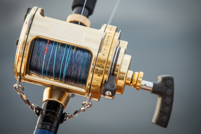 big game fishing reel in natural setting